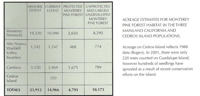 MontereyPineForestAcreage